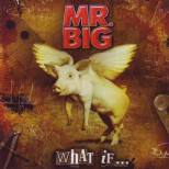 Mr. Big - What if ...