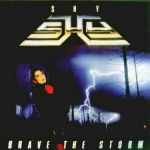 Shy - Brave the Storm (Rem.)